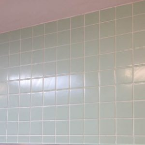 Freshly Cleaned Bathroom Tile Grout
